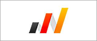 logo_bvfi